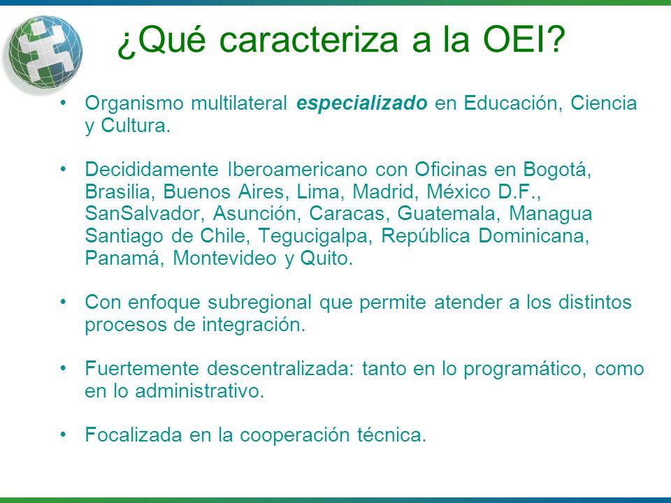¿Qué caracteriza a la OEI