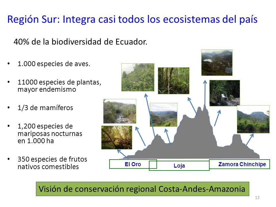 Región Sur: Integra casi todos los ecosistemas del país