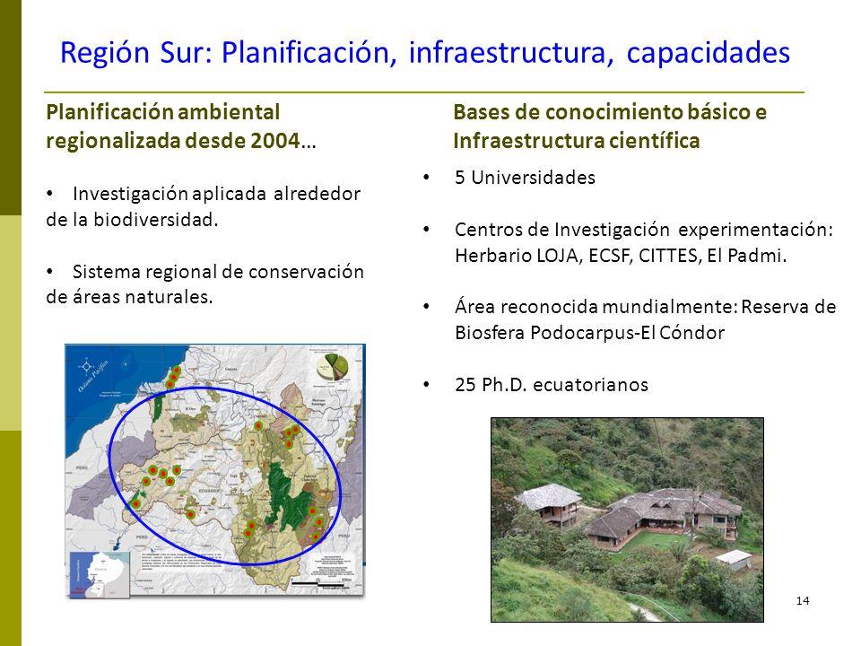Región Sur: Planificación, infraestructura, capacidades