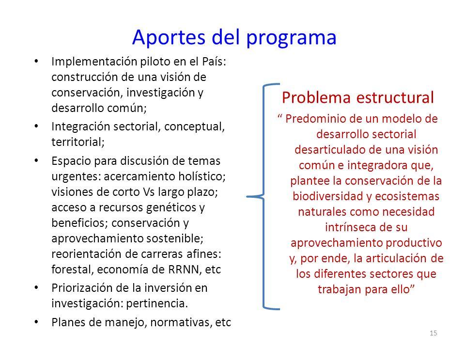 Aportes del programa Problema estructural
