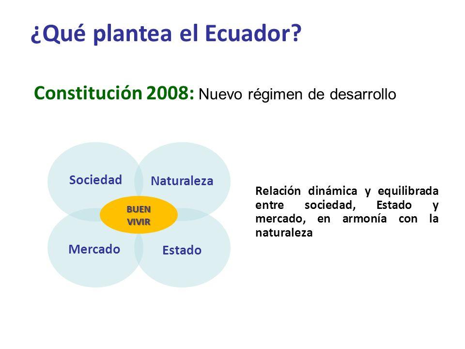 ¿Qué plantea el Ecuador