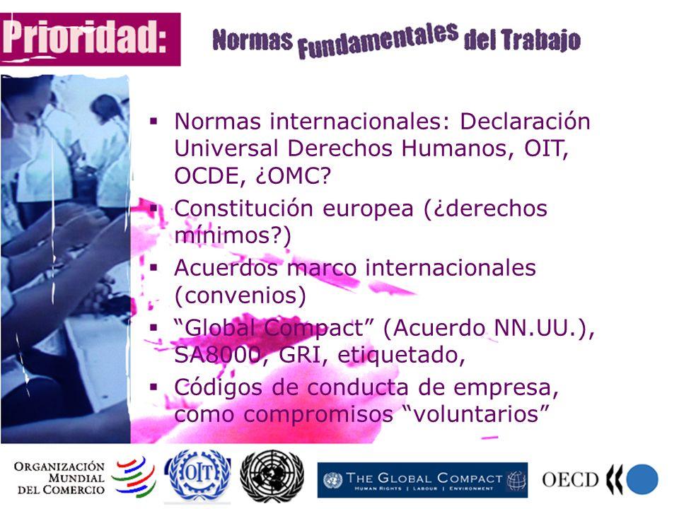 Normas internacionales: Declaración Universal Derechos Humanos, OIT, OCDE, ¿OMC