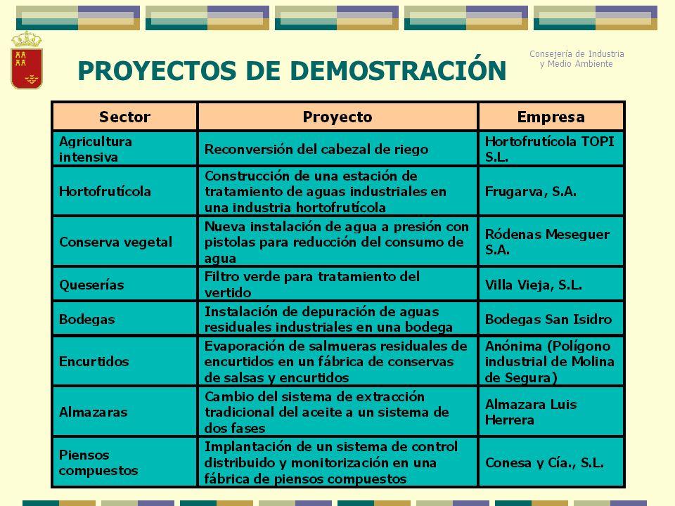 PROYECTOS DE DEMOSTRACIÓN