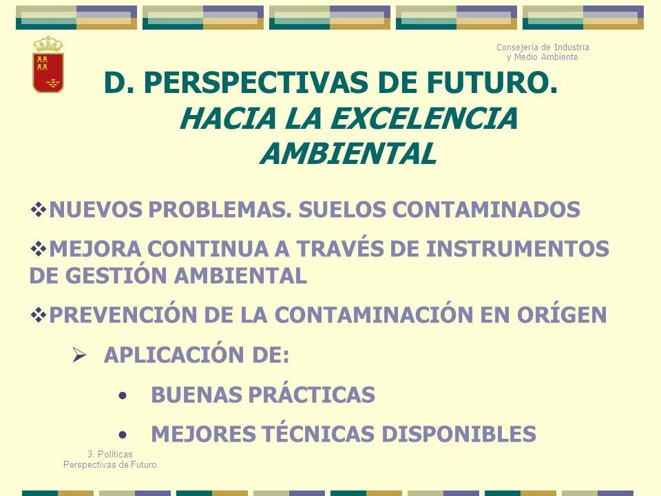 D. PERSPECTIVAS DE FUTURO. HACIA LA EXCELENCIA AMBIENTAL