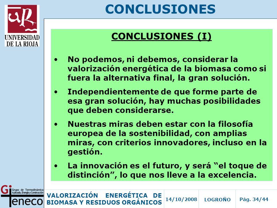 CONCLUSIONES CONCLUSIONES (I)
