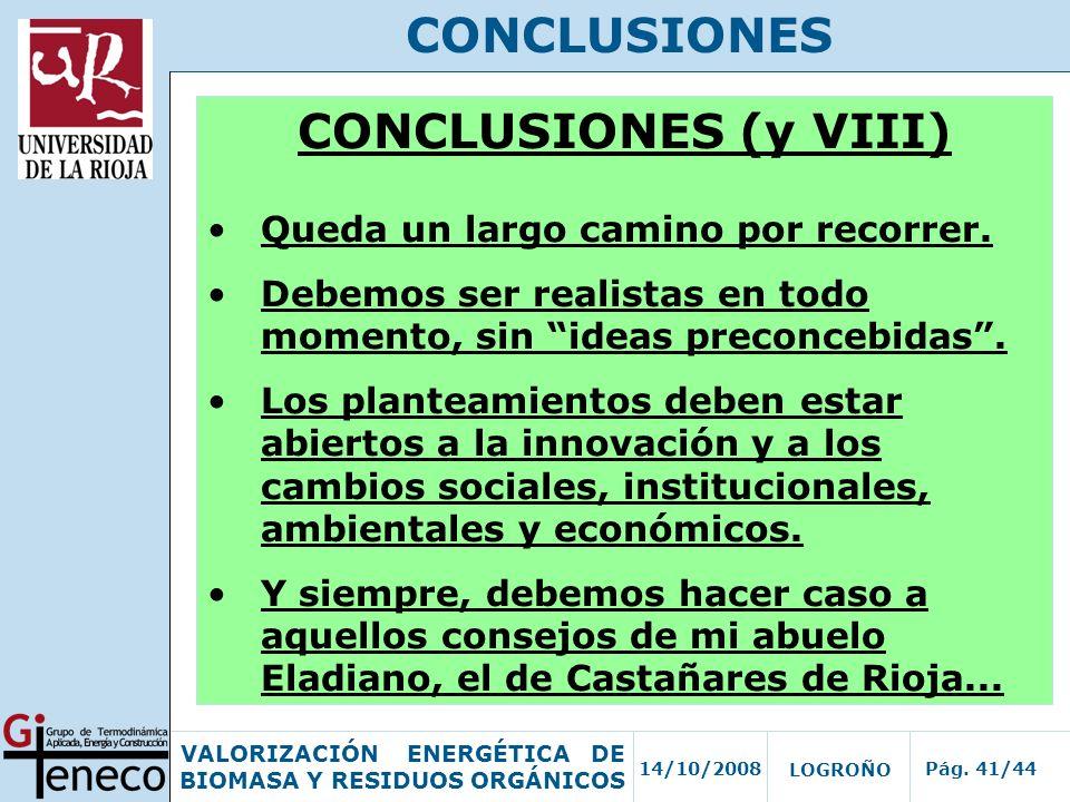 CONCLUSIONES CONCLUSIONES (y VIII)