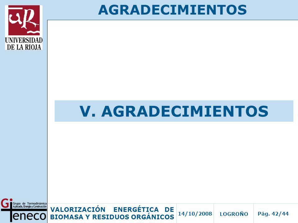 AGRADECIMIENTOS V. AGRADECIMIENTOS