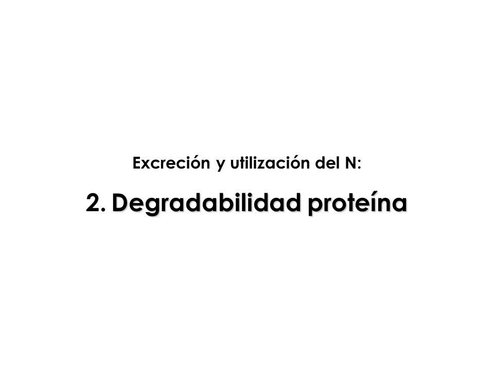Excreción y utilización del N: 2. Degradabilidad proteína