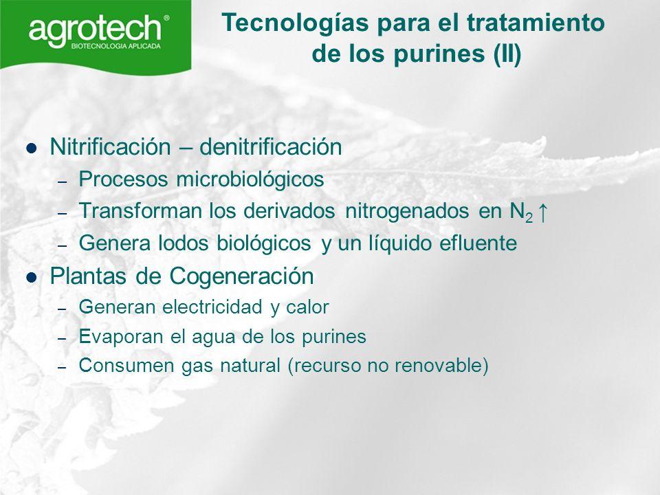 Tecnologías para el tratamiento de los purines (II)