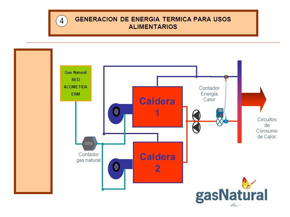 GENERACION DE ENERGIA TERMICA PARA USOS ALIMENTARIOS