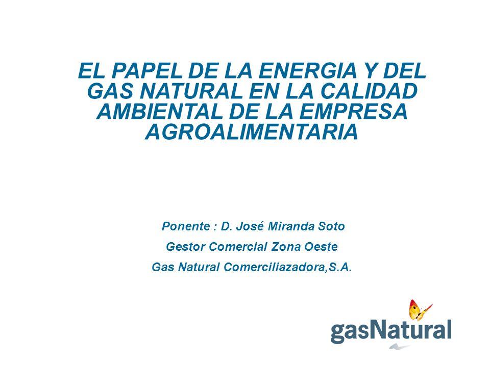 EL PAPEL DE LA ENERGIA Y DEL GAS NATURAL EN LA CALIDAD AMBIENTAL DE LA EMPRESA AGROALIMENTARIA