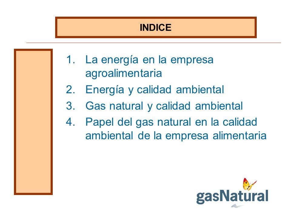 La energía en la empresa agroalimentaria Energía y calidad ambiental