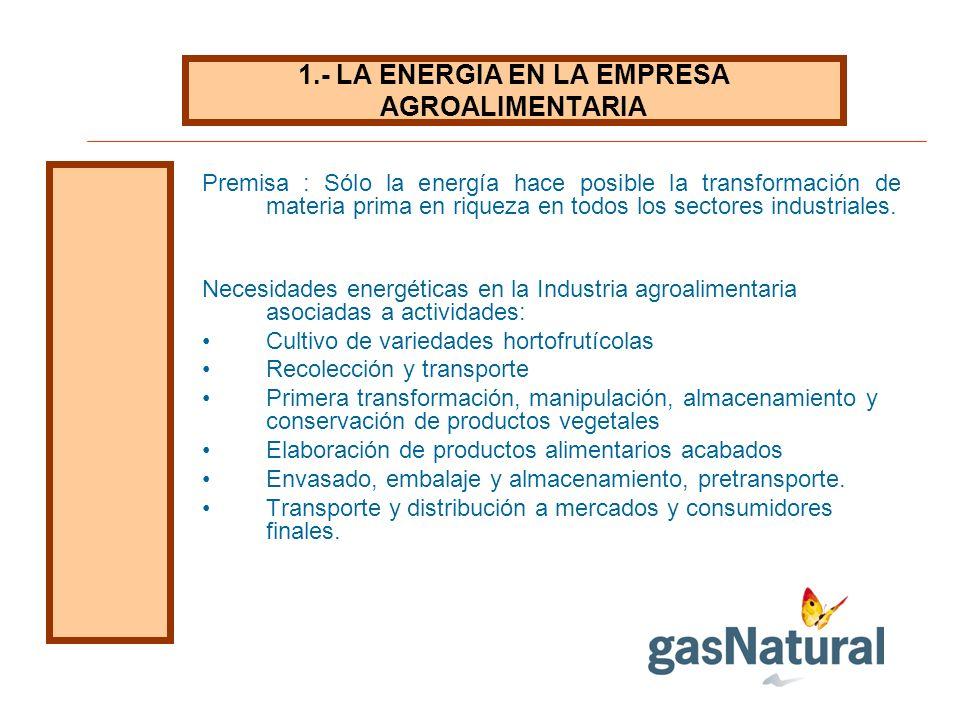 1.- LA ENERGIA EN LA EMPRESA AGROALIMENTARIA