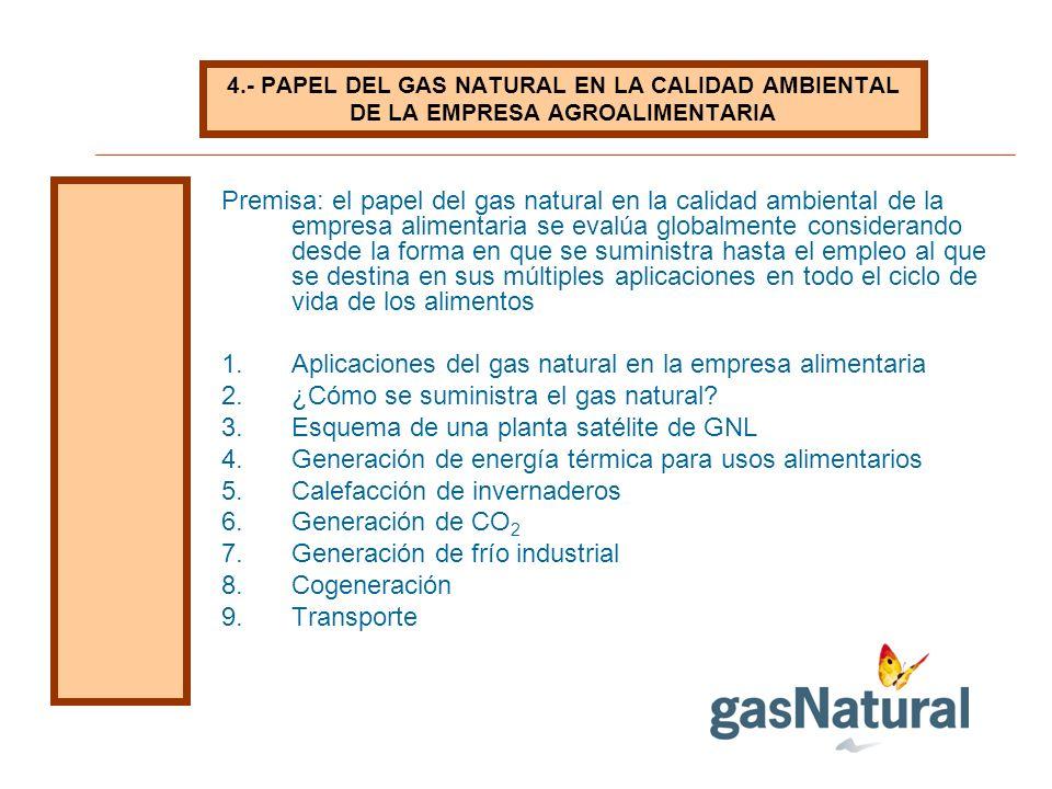 Aplicaciones del gas natural en la empresa alimentaria