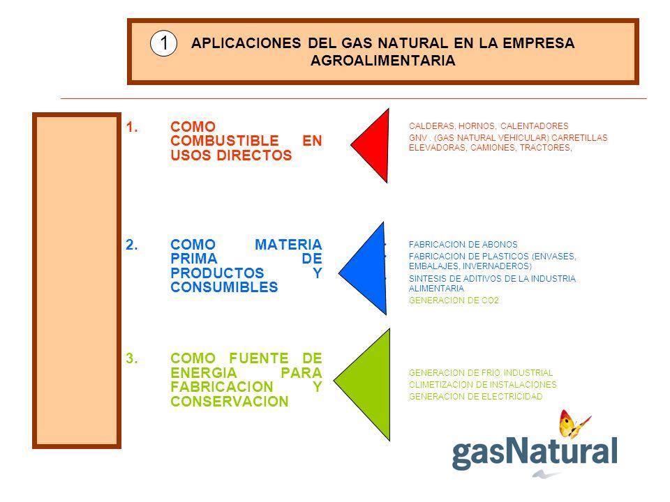 APLICACIONES DEL GAS NATURAL EN LA EMPRESA AGROALIMENTARIA