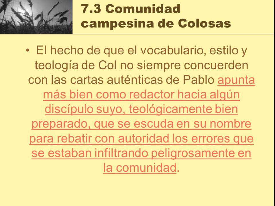 7.3 Comunidad campesina de Colosas