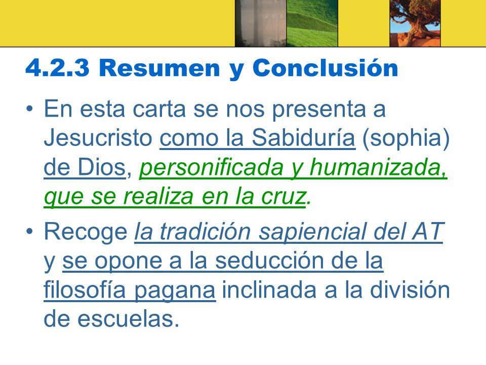 4.2.3 Resumen y Conclusión