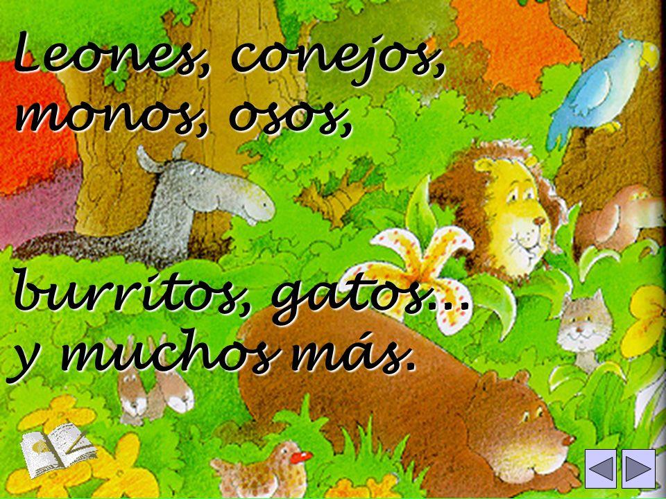 Leones, conejos, monos, osos,