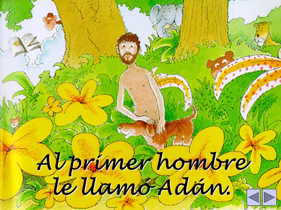 Al primer hombre le llamó Adán.