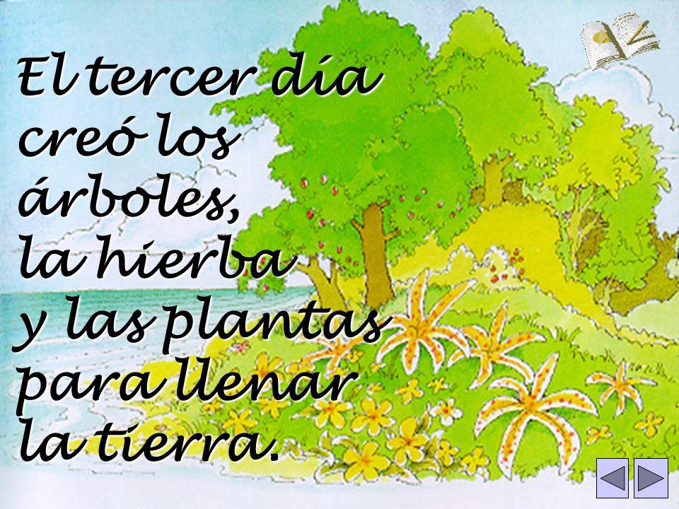 El tercer día creó los árboles, la hierba y las plantas para llenar la tierra.