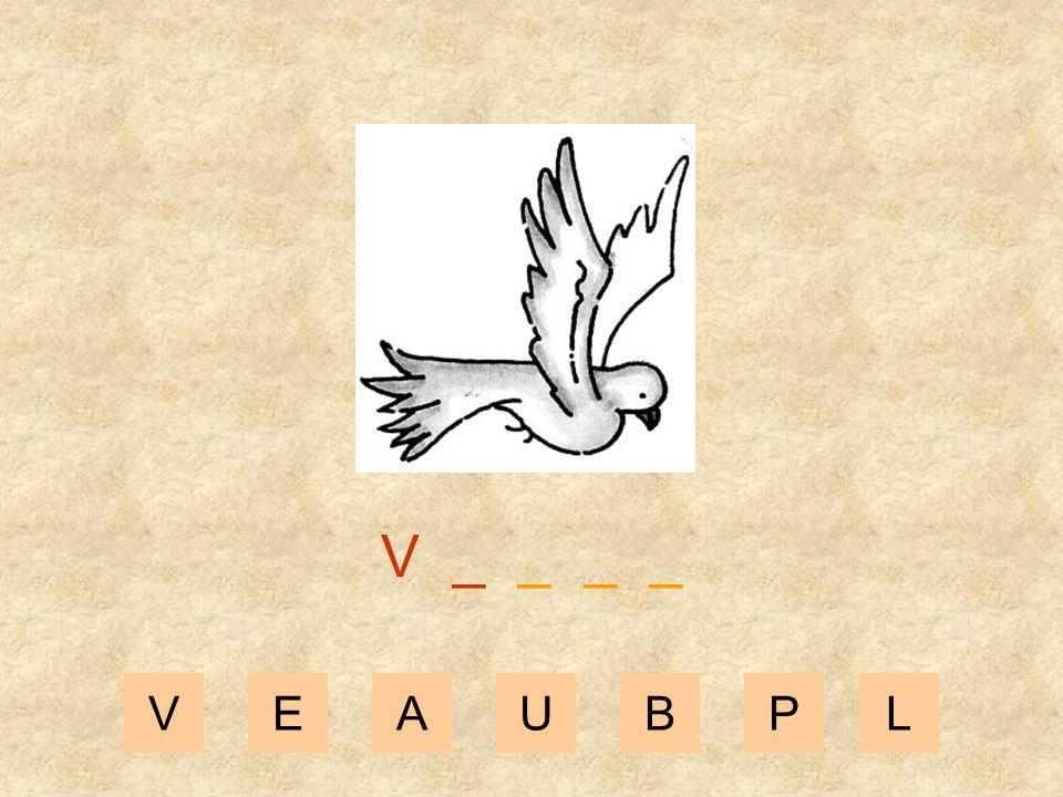 V _ _ _ _ V E A U B P L
