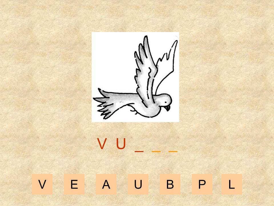 V U _ _ _ V E A U B P L