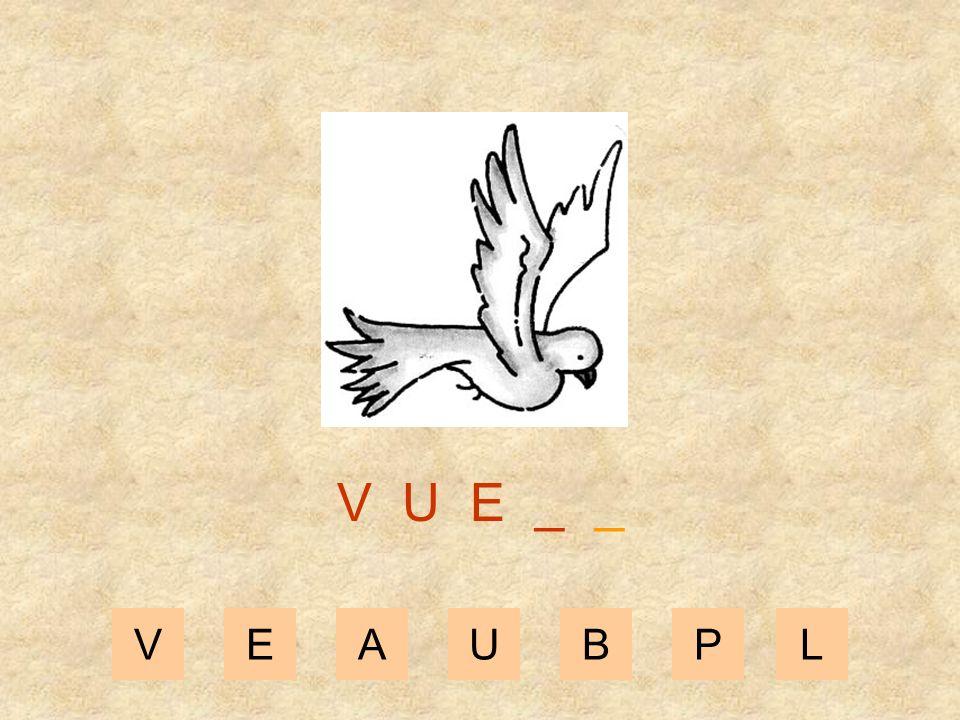 V U E _ _ V E A U B P L
