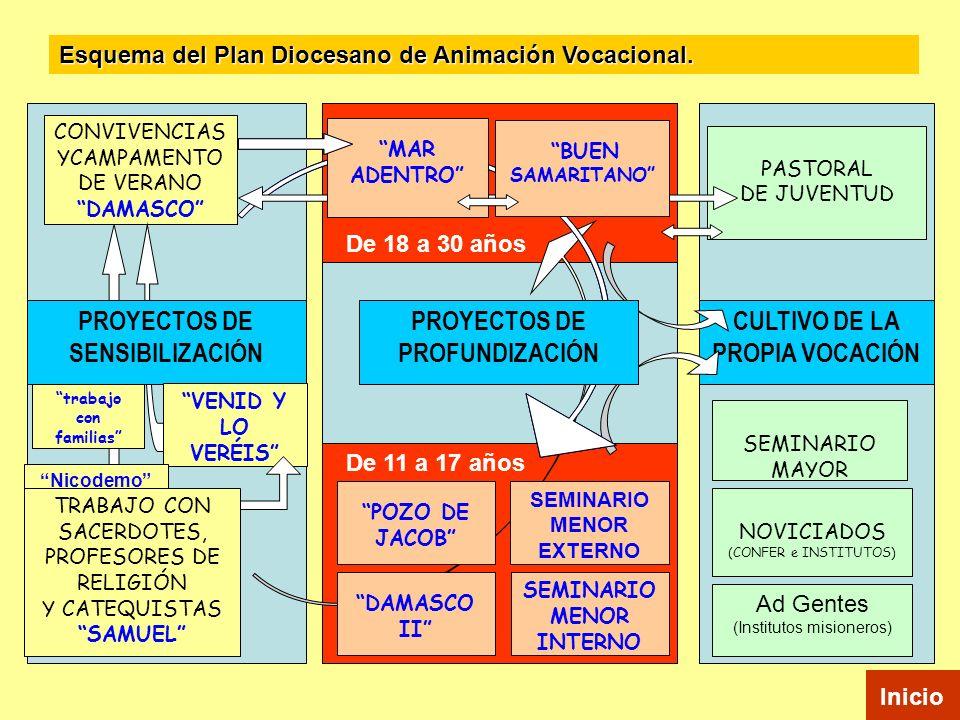 PROYECTOS DE SENSIBILIZACIÓN PROYECTOS DE PROFUNDIZACIÓN CULTIVO DE LA