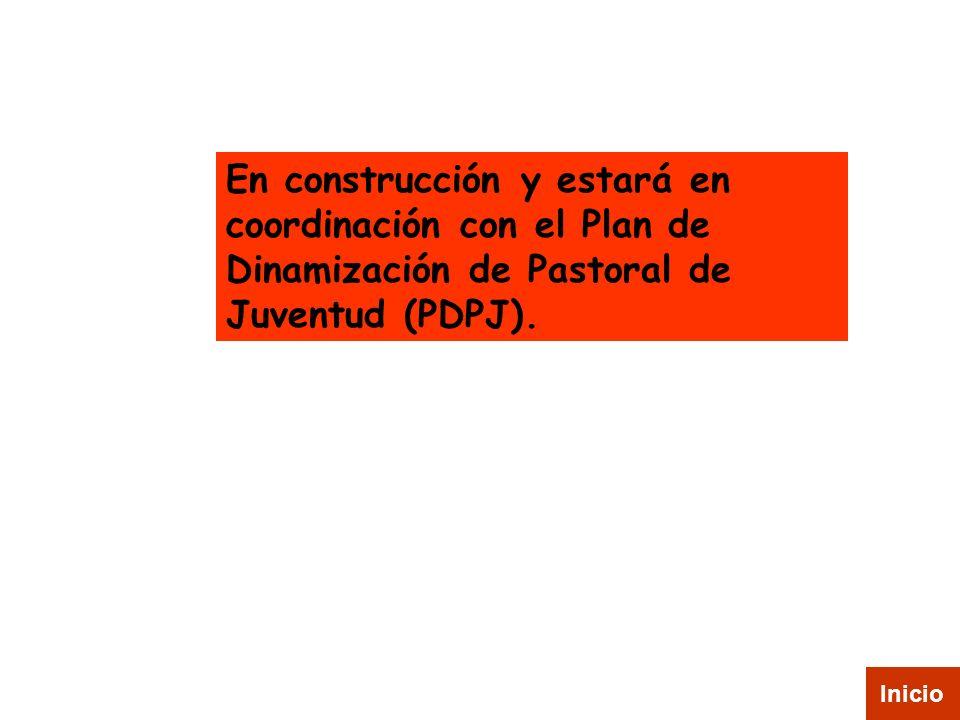 En construcción y estará en coordinación con el Plan de Dinamización de Pastoral de Juventud (PDPJ).
