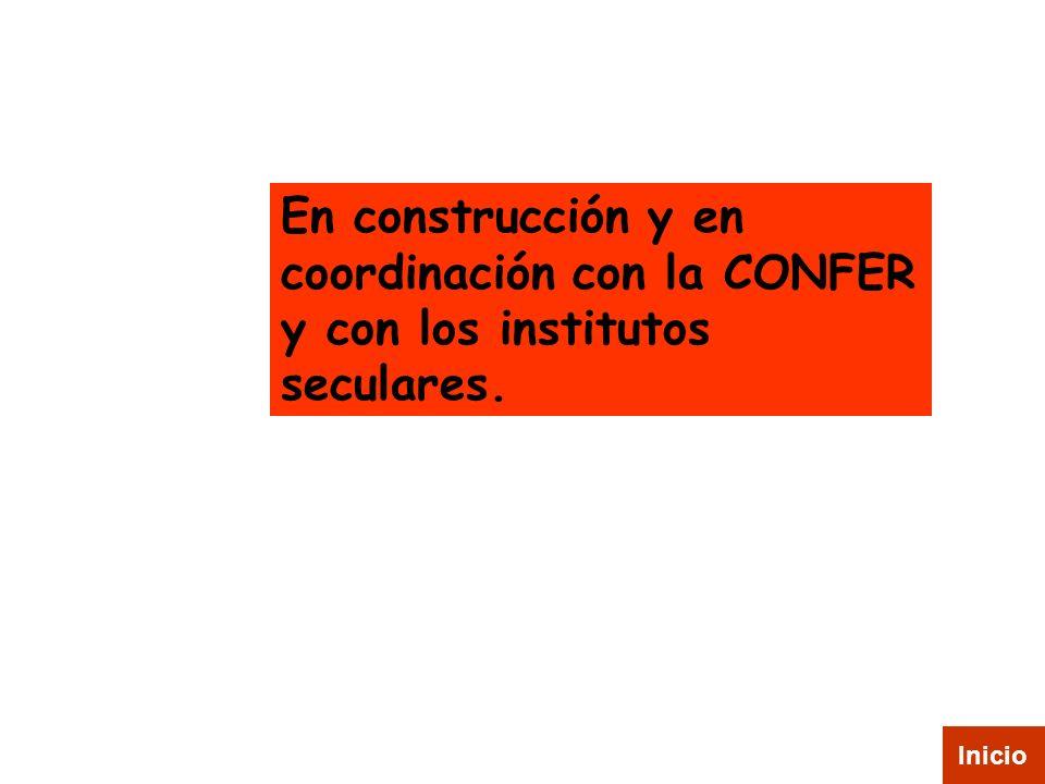 En construcción y en coordinación con la CONFER y con los institutos seculares.