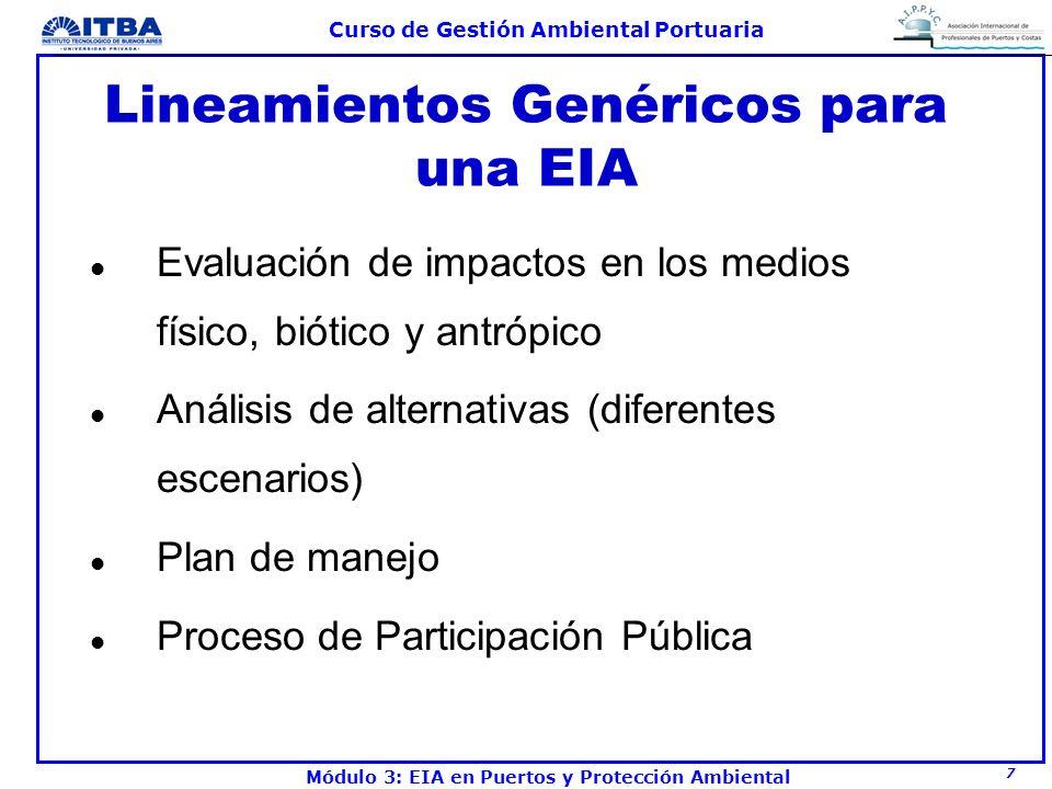 Lineamientos Genéricos para una EIA