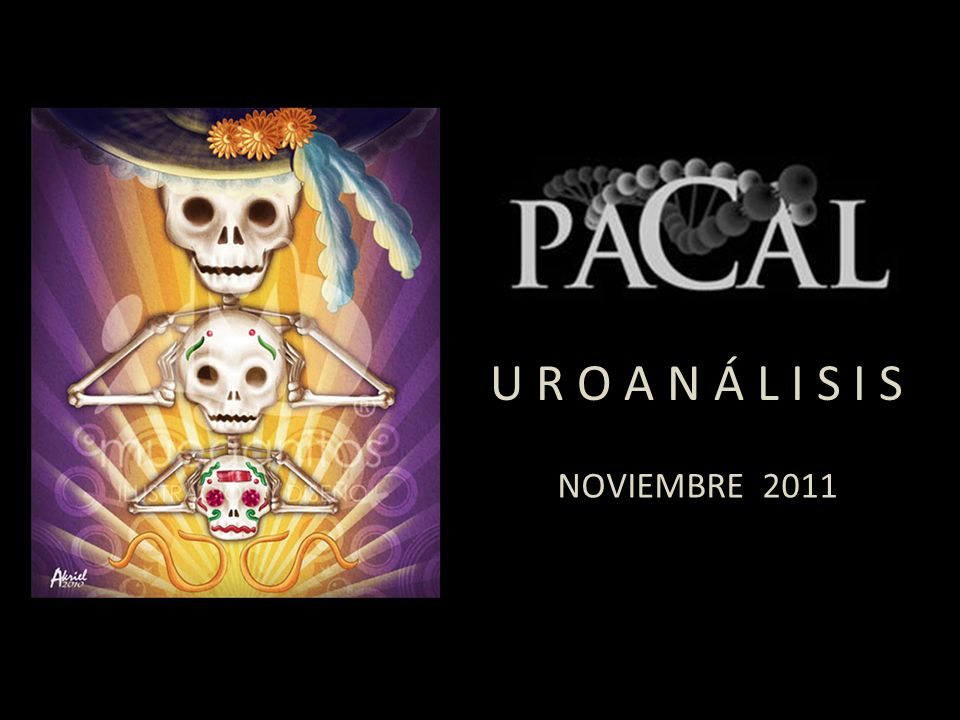U R O A N Á L I S I S NOVIEMBRE 2011