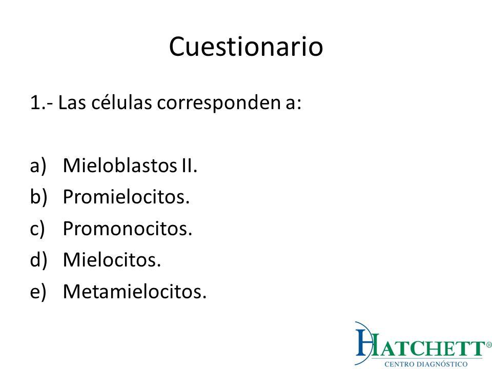 Cuestionario 1.- Las células corresponden a: Mieloblastos II.