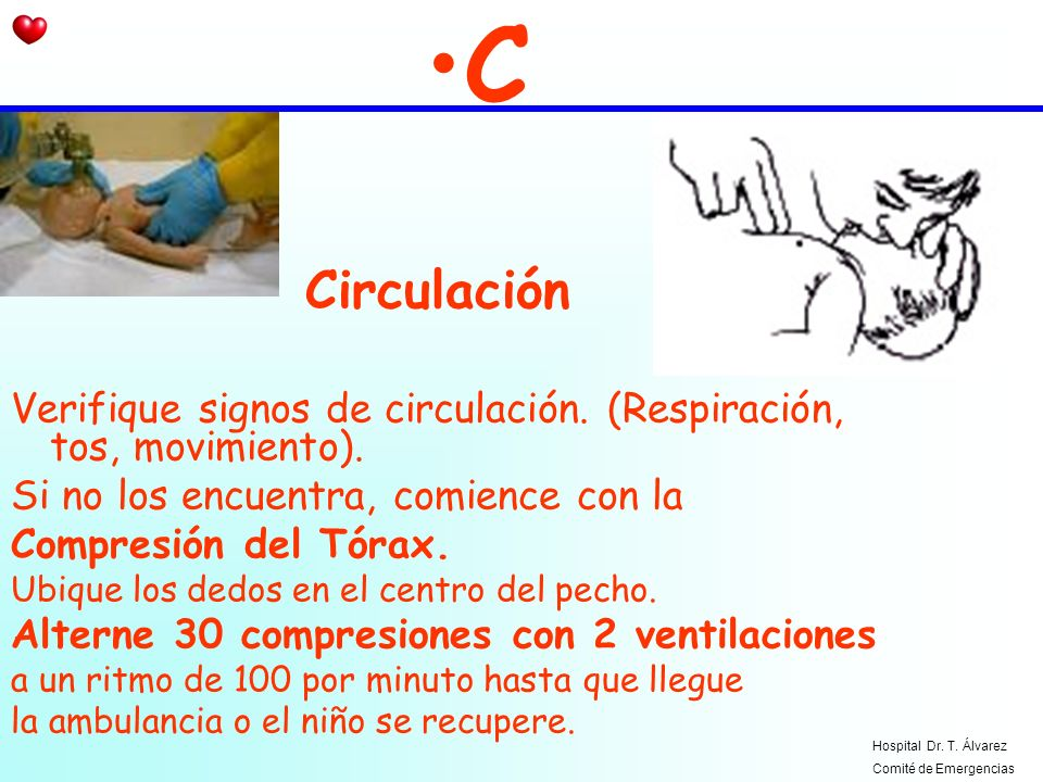 CCirculación. Verifique signos de circulación. (Respiración, tos, movimiento). Si no los encuentra, comience con la.