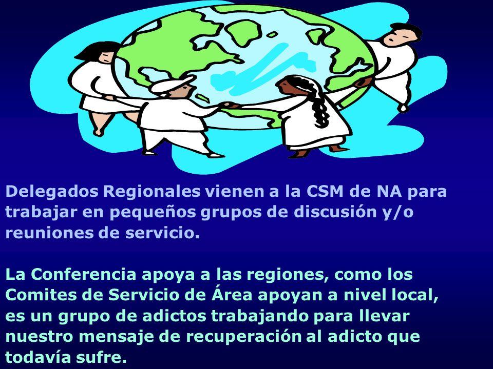 Delegados Regionales vienen a la CSM de NA para