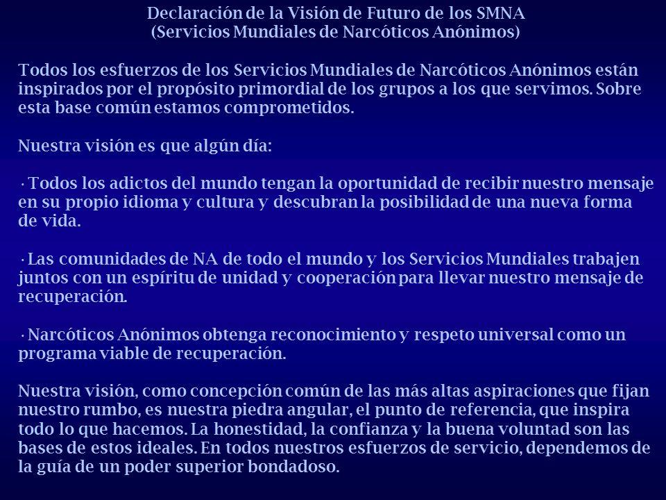 Declaración de la Visión de Futuro de los SMNA