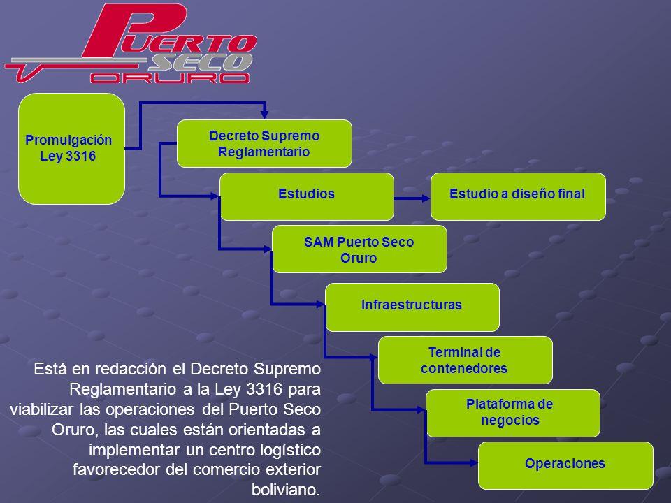 Promulgación Ley 3316 Decreto Supremo Reglamentario. Estudios. Estudio a diseño final. SAM Puerto Seco Oruro.