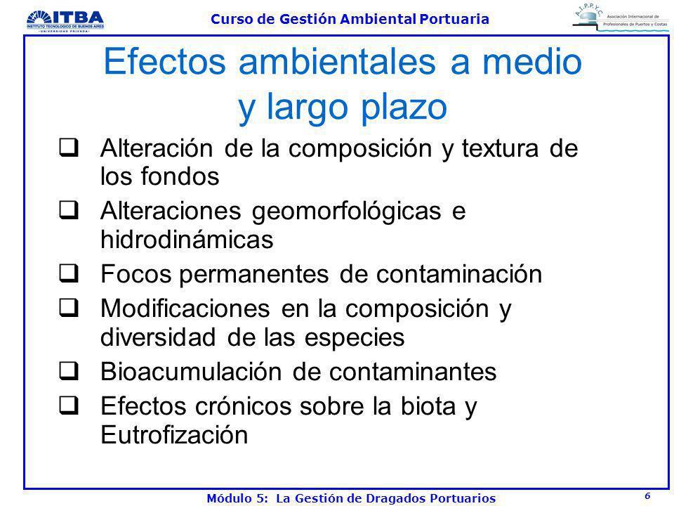 Efectos ambientales a medio y largo plazo