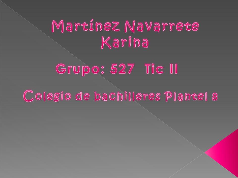 Martínez Navarrete Karina