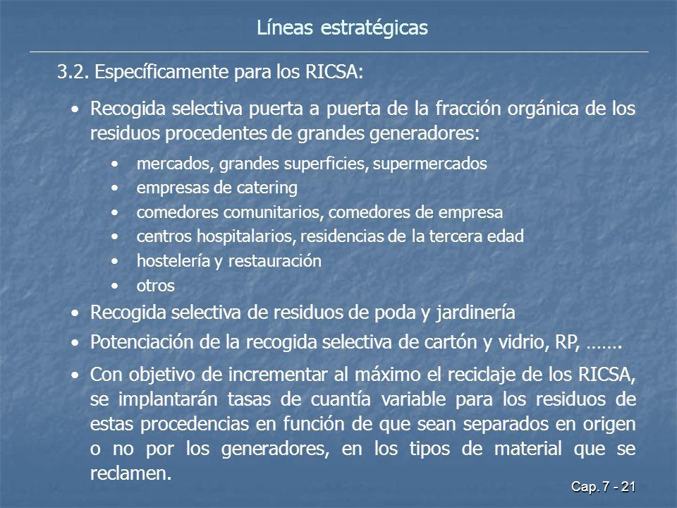 Líneas estratégicas 3.2. Específicamente para los RICSA: