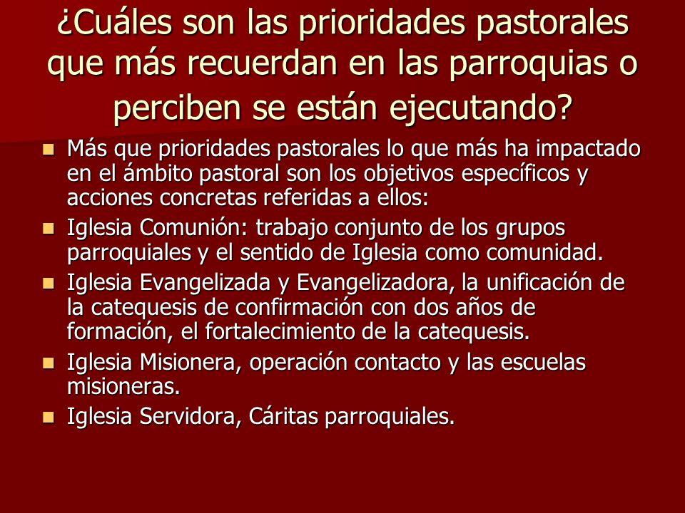 ¿Cuáles son las prioridades pastorales que más recuerdan en las parroquias o perciben se están ejecutando