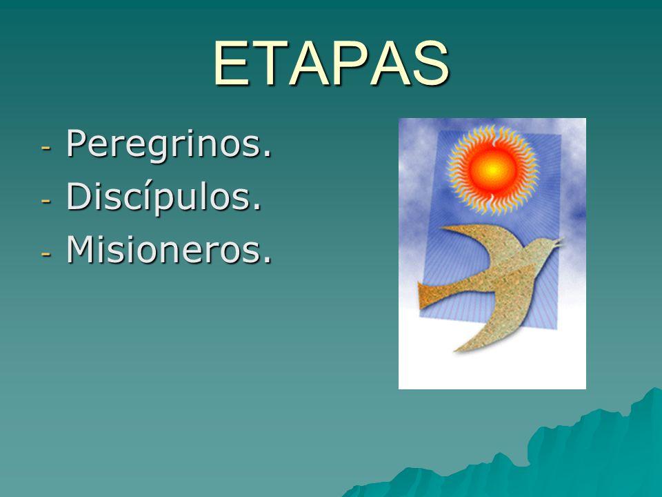 ETAPAS Peregrinos. Discípulos. Misioneros.