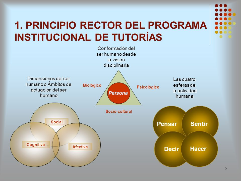 1. PRINCIPIO RECTOR DEL PROGRAMA INSTITUCIONAL DE TUTORÍAS