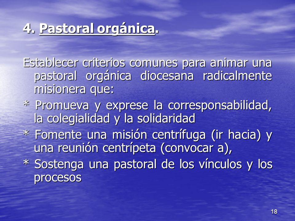 4. Pastoral orgánica. Establecer criterios comunes para animar una pastoral orgánica diocesana radicalmente misionera que: