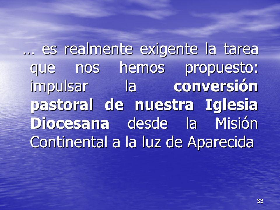 … es realmente exigente la tarea que nos hemos propuesto: impulsar la conversión pastoral de nuestra Iglesia Diocesana desde la Misión Continental a la luz de Aparecida