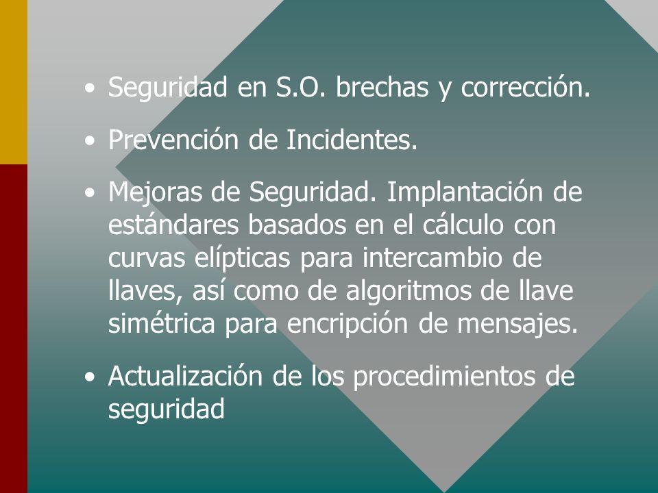 Seguridad en S.O. brechas y corrección.