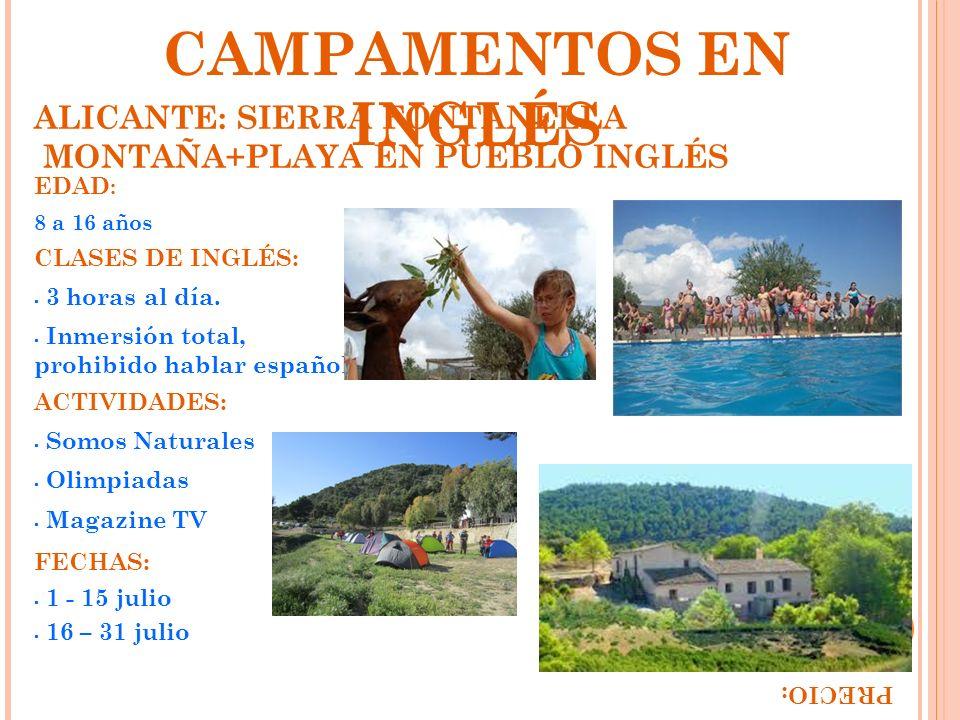 CAMPAMENTOS EN INGLÉS ALICANTE: SIERRA FONTANELLA