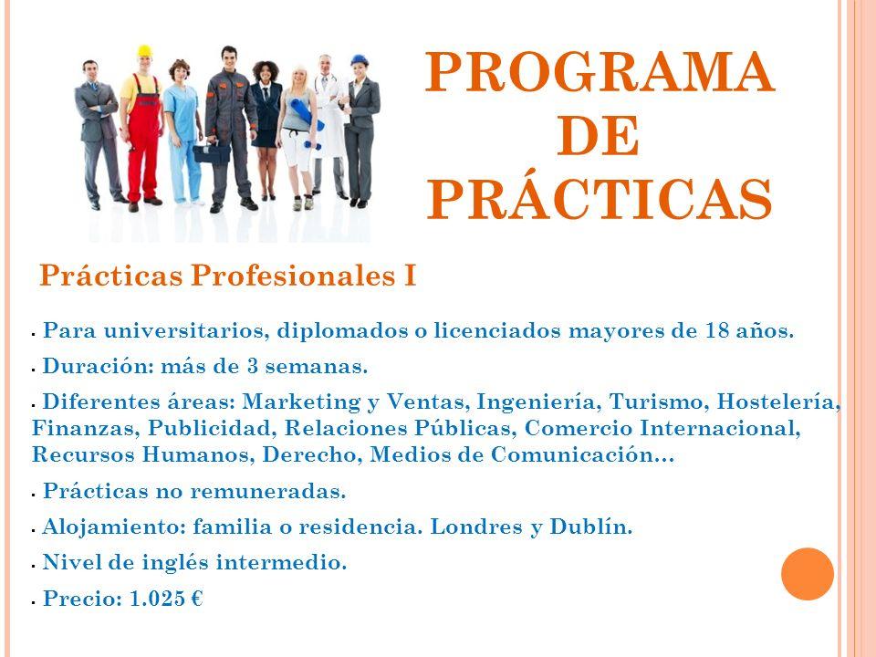 PROGRAMA DE PRÁCTICAS Prácticas Profesionales I
