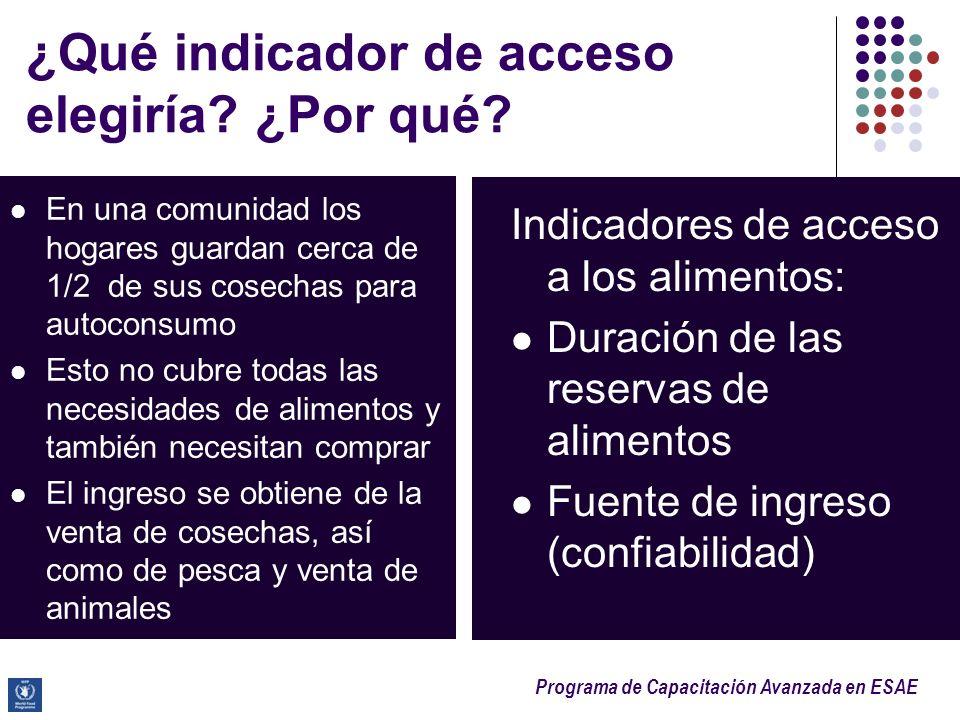 ¿Qué indicador de acceso elegiría ¿Por qué