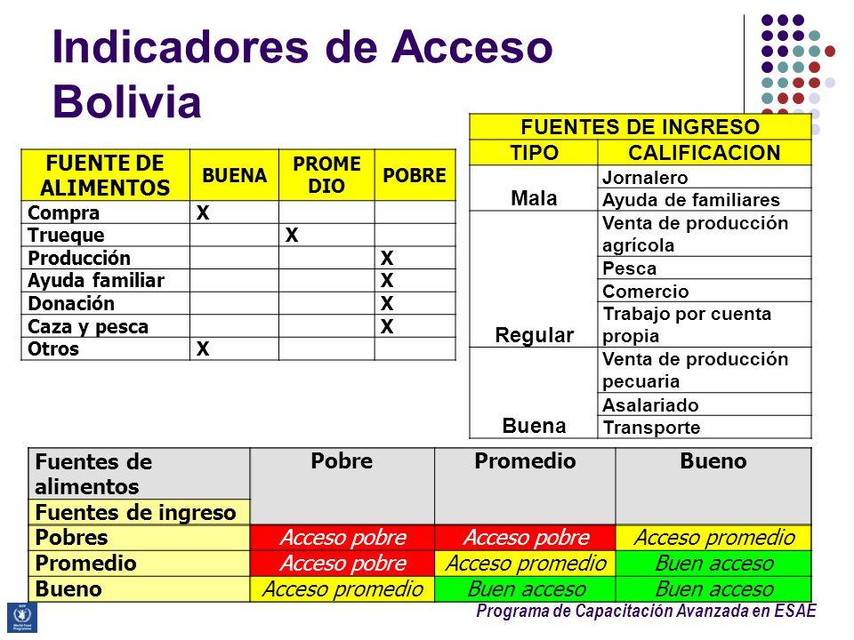 Indicadores de Acceso Bolivia